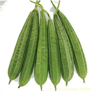 Picture of Beera 500g